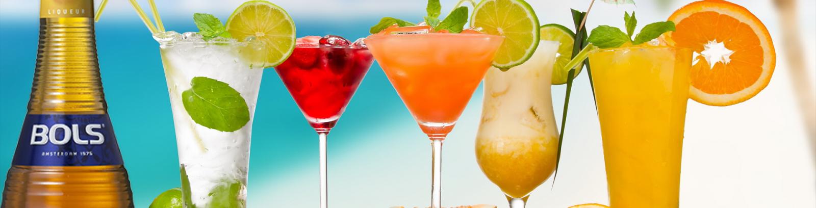 Liqueur / Tequila / Gin / Rum